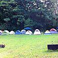 Troop75 Camp Ehrhorn Sept 15 2012 (26)
